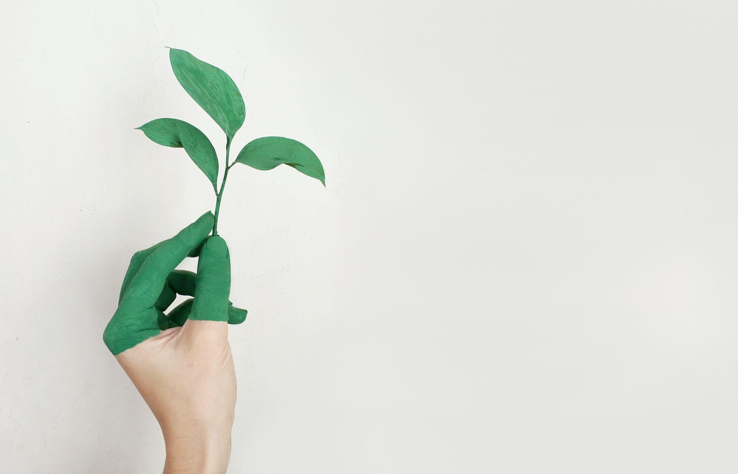 RSE impact environnemental